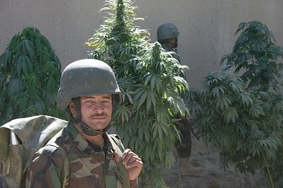 afghan-soldier-and-weed-in-baraki-barak-oct-18-2009