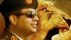 sisi lion
