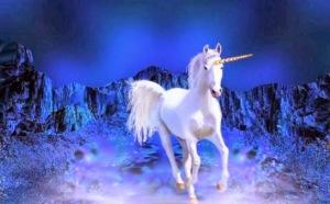 unicorn1391622966