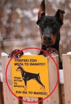 50 τρομερές ελληνικές τρελες φωτογραφίες που θα μοιραστεις με τους Φίλους σου! (1)