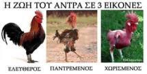 50 τρομερές ελληνικές τρελες φωτογραφίες που θα μοιραστεις με τους Φίλους σου! (31)