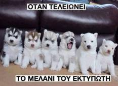 50 τρομερές ελληνικές τρελες φωτογραφίες που θα μοιραστεις με τους Φίλους σου! (55)
