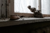CHERNOBYL 30 YEARS ON (8)