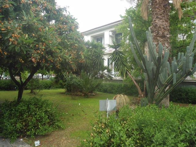 6.Βόλτα στον όμορφο κήπο του Αρεταίειου.6.Βόλτα στον όμορφο κήπο του Αρεταίειου.