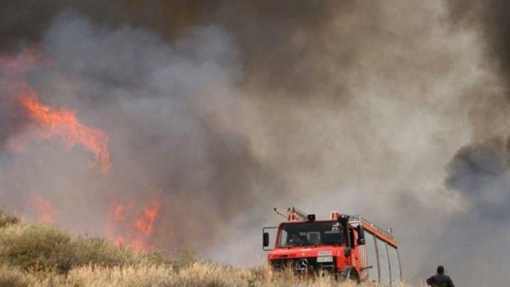 Μεγάλη η φωτιά που καίει στην Ηλεία – ΤΩΡΑ