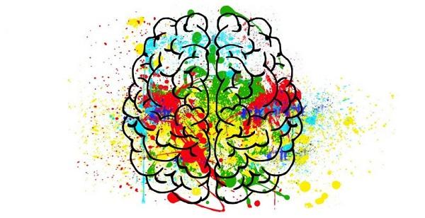 skitso brain
