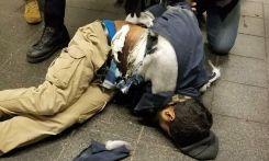 Ένας 27χρονος από το Μπαγκλαντές, κάτοικος Μπρούκλιν, είναι ο συλληφθείς για την έκρηξη σε σταθμό λεωφορείων στη Νέα Υόρκη, σύμφωνα με τη New York Post, που έδωσε στη δημοσιότητα τη φωτογραφία του. Ο άνδρας φέρεται να είχε επάνω του εκρηκτικά τα οποία εξερράγησαν νωρίτερα, την ώρα που ετοιμαζόταν να επιβιβαστεί σε βαγόνι του μετρό.