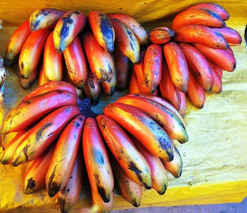 bananas red1