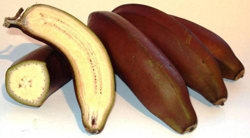 bananas red3