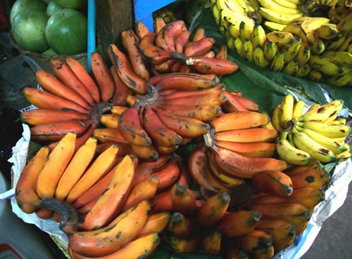 bananas red4