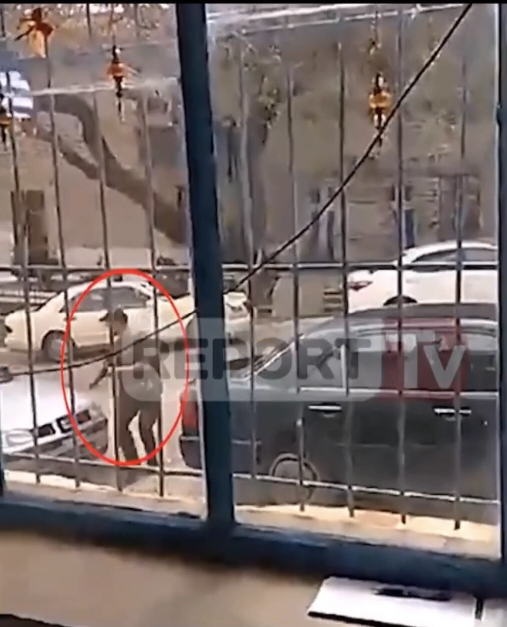 ΚΩΝΣΤΑΝΤΙΝΟΣ ΚΑΤΣΙΦΑΣ