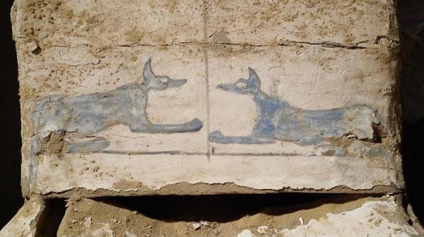 egypt mummies polish discovery2