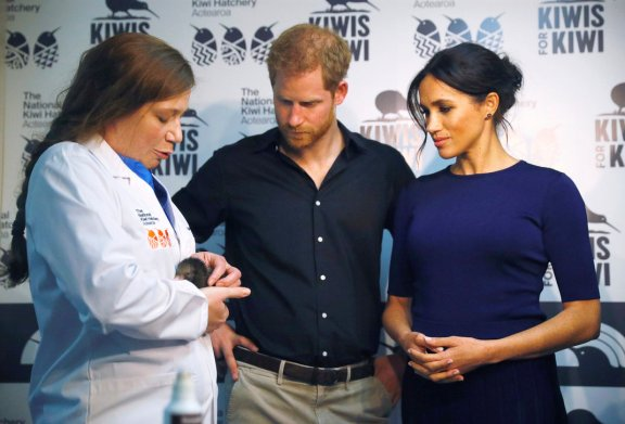 Britain's Prince Harry and Meghan, the Duchess of Sussex talk to staff as they look at kiwi chicks during a visit to the National Kiwi Hatchery at Rainbow Springs in Rotorua, New Zealand, Wednesday, Oct. 31, 2018. Prince Harry and his wife Meghan are on the final day of their 16-day tour of Australia, New Zealand and the South Pacific. (Phil Nobel/Pool Photo via AP)