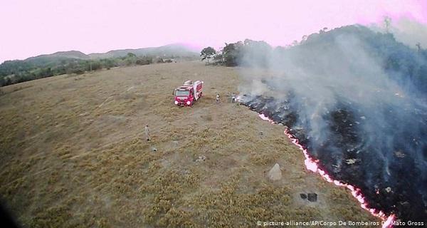Αμαζόνιος: Φωτιά στους πνεύμονες του πλανήτη