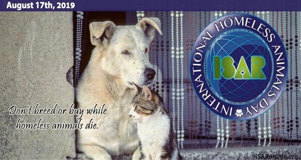 Διεθνής Ημέρα Αδέσποτων Ζώων