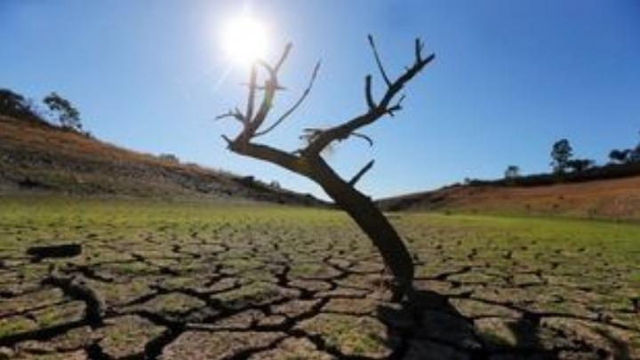 Δανία: 2,4 εκατ. ευρώ συγκεντρώθηκαν στον πρώτο τηλεμαραθώνιο για την αντιμετώπιση της κλιματικής αλλαγής.