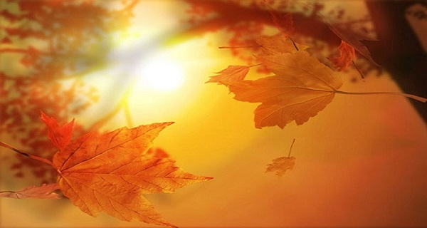 Φθινοπωρινή ισημερία 2019: Από αύριο (23/9) επίσημα Φθινόπωρο
