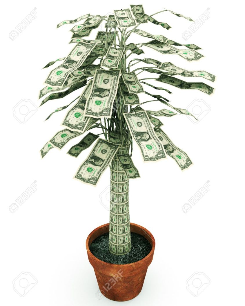 43355763-money-tree-an-illustration-related-to-growing-wealth-or-the-phrase-on-frugality-money-doesn-t-grow-o